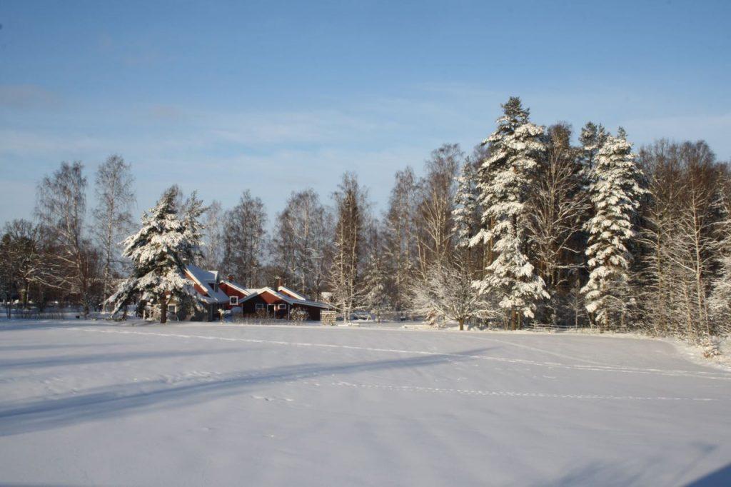 Vinter i Testa